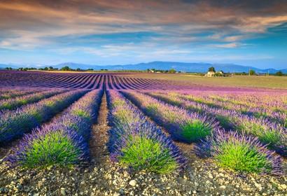 Dordogne - 164 Unterkünfte