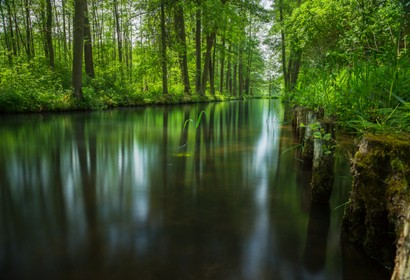 Spree Forest - 40 Unterkünfte