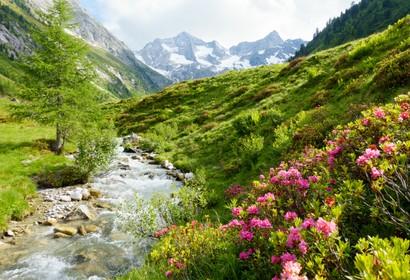 Tirol - 1.182 Unterkünfte